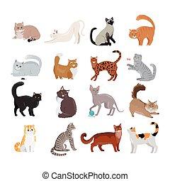 vector., tervezés, ikonok, állhatatos, lakás, cats.