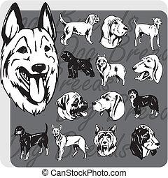 vektor, állhatatos, -, kutya, nem