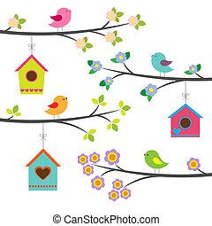vektor, állhatatos, madarak, birdhouses.