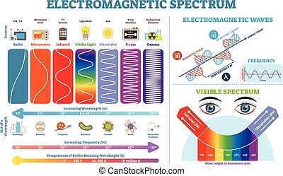 vektor, értesülés, tele, elements., temperature., elektromágneses, gyűjtés, színkép, ábra, lenget, ábra, infographic, frekvencia, szerkezet, lengths, fizika, scheme.