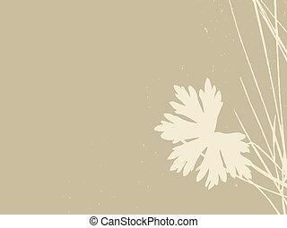 vektor, barna háttér, ábra, fűszernövény