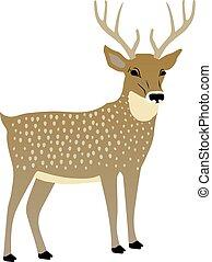 vektor, csinos, deer., ábra