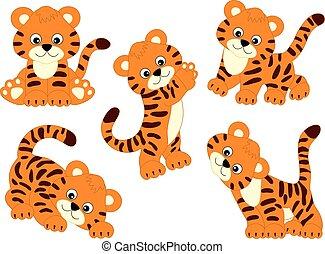 vektor, csinos, karikatúra, állhatatos, tigris