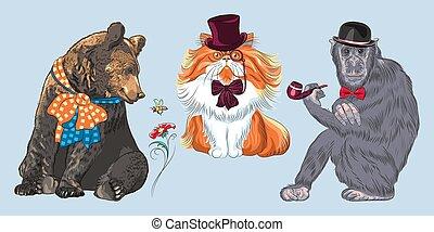 vektor, furcsa, majom, csípőre szabott, karikatúra