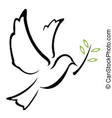vektor, galamb, béke