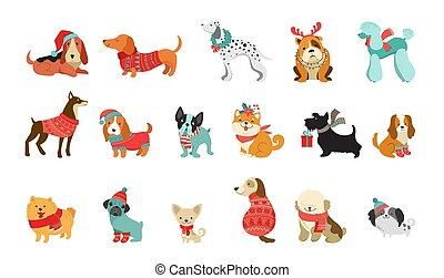 vektor, grafikus, kisállat, pulóver, csinos, őt scarfs, szeret, karácsony, kutyák, ábra, segédszervek, alapismeretek, vidám, gyűjtés, kalapok, kötött