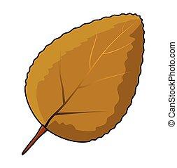 vektor, ikon, levél növényen, jelkép, narancs, design.