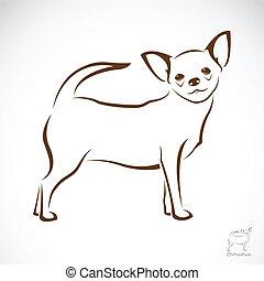 vektor, kép, , kutya