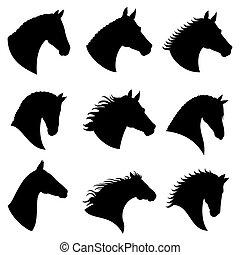 vektor, körvonal, fej, ló