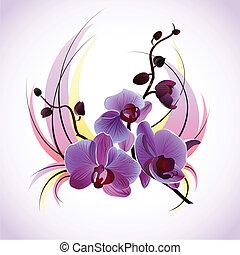 vektor, köszönés kártya, orhideák