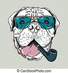 vektor, kutya, csípőre szabott, furcsa, karikatúra, bullmastiff