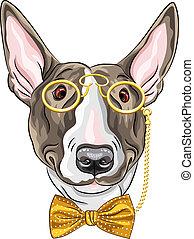 vektor, kutya, csípőre szabott, furcsa, karikatúra, bullterrier