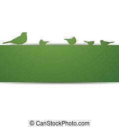 vektor, madarak, háttér