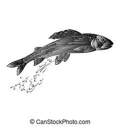vektor, pér, lazac, feldolgozott, fish, szüret, fém