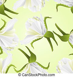 vektor, rózsa, struktúra, fehér, rügy, seamless, virág