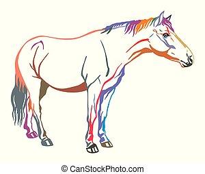 vektor, színes, ló
