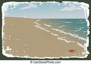 vektor, tengerpart