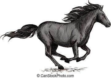 versenyzés, ló, sport, fekete, futás