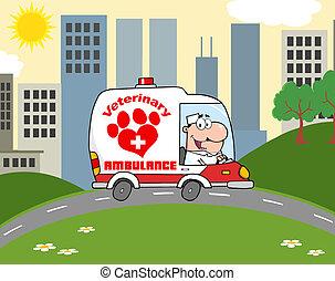 veterinary orvos, vezetés, mentőautó