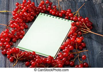 viburnum, jegyzetfüzet, előírások