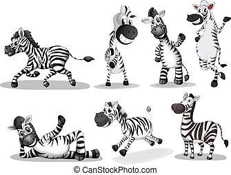 vidám, zebra