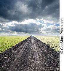 vidéki, köd, út, horizont, őt jár
