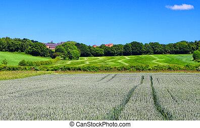 vidéki parkosít, eredet