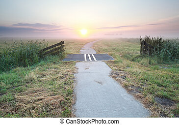 vidéki táj, ködös, bicikli, napkelte, út