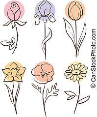 virág, állhatatos