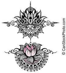 virág, állhatatos, lótusz