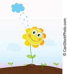 virág, boldog