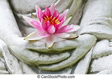 virág, feláll, buddha, hatalom kezezés, becsuk