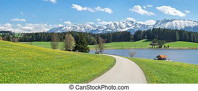 virág, kaszáló, hó, tó, befedett, hegy., út