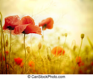 virág, mák