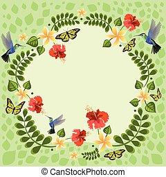 virág, pillangók, kolibri, ábra, koszorú, virágos, flowers., vektor, plumeria, meghívás, ábra, esküvő, hibiscus., kártya, kártya.