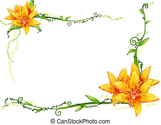 virág, sárga, szőlőtőke