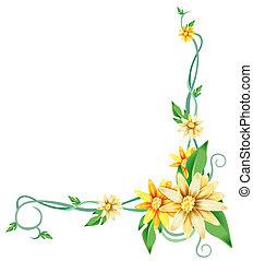 virág, sárga, szőlőtőke, százszorszép