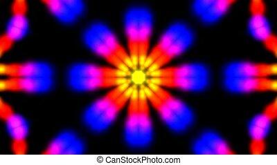 virág, szín, motívum, élénkség