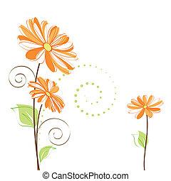 virág, színes, tavasz, háttér, százszorszép, fehér
