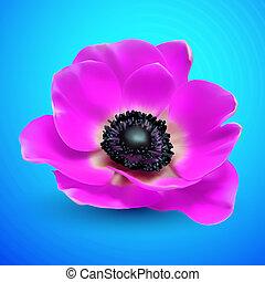virág, vektor, elvont