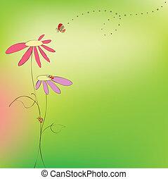 virágos, eredet, nyár, kártya, katicabogár