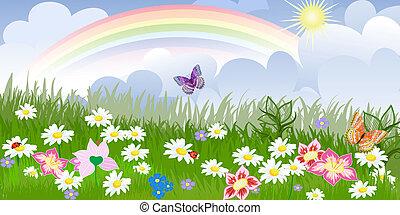 virágos, panoráma, pázsit