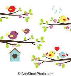 virágzás, elágazik, madarak, állhatatos