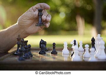 visszavonul emberek, liget, sakkjáték, aktivál senior, játék, ember