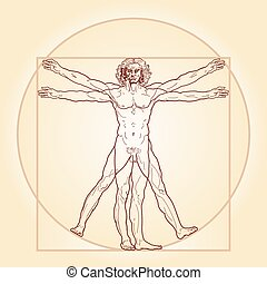 vitruvian, (homo, ember, vitruviano)