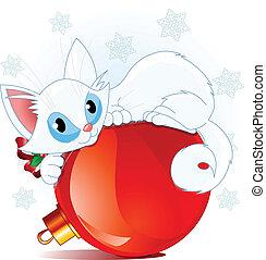white christmas, macska