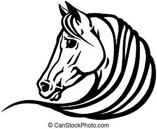 white ló, fej