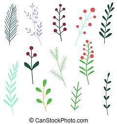 white., plants., elements., karikatúra, vektor, virágos, állhatatos, elszigetelt