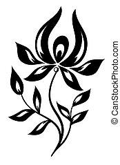 white virág, fekete, elszigetelt