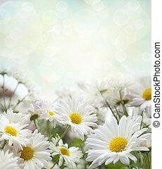 white virág